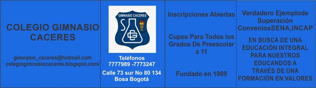 ranking de los mejores colegios de colombia y bogota del nuevamente